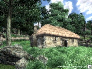 Elder Scrolls Oblivion Screenshot of a House