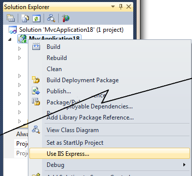 "Description: The ""Use IIS Express"" option in Visual Studio"