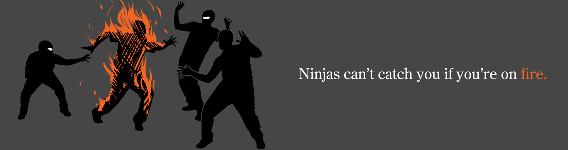 ninjasonfire