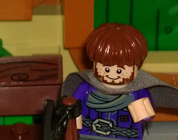 LEGO Hobbit close up