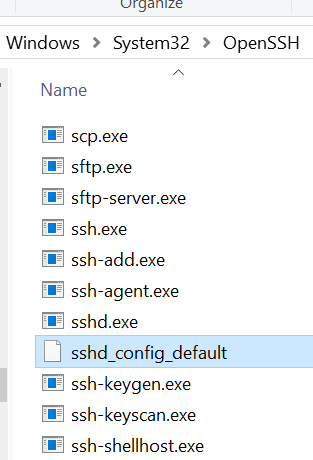 ssh public key windows 10