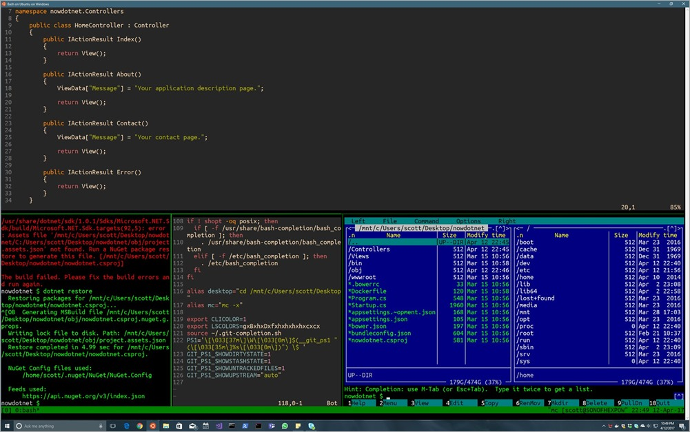 Setting up a Shiny Development Environment within Linux on Windows 10