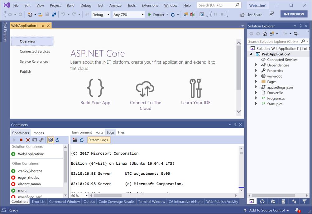 Container Tool Window in Visual Studio 2019