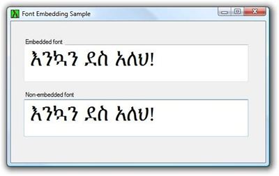 Custom Cultures - WinForms Font Embedding Code with Ethiopian