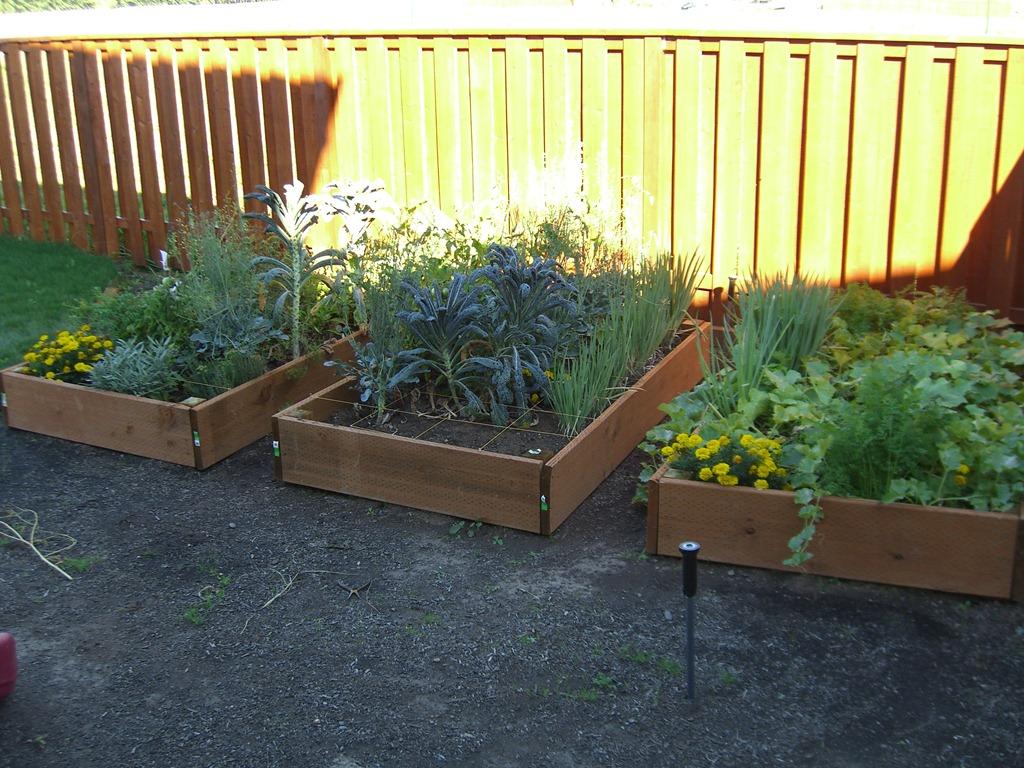 Square Foot Gardening For Programmers Scott Hanselman