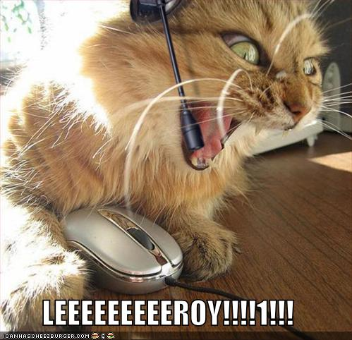 Funny Tumblr on Lolcats Funny Pictures Leroy Jenkins Jpg